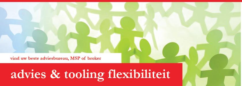 Advisering organisaties en leveranciers tooling: over flexibele schil, inhuur ZZPers, verhouding vast- en flexibel personeel, elektronisch aanbesteden (tendering), broker, contractmanagement, VMS, MSP