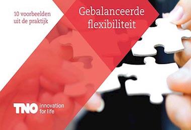 Gebalanceerde Flexibiliteit: Flexers als toppers in Elkerliek Ziekenhuis