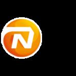Interim Resourcemanager – NN Group