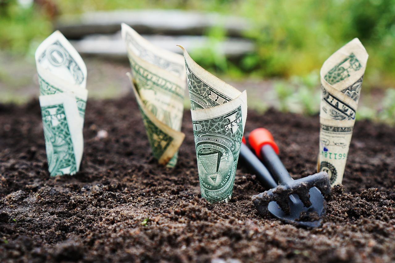 Nieuw platform laat freelancers uitbetalen in… aandelen